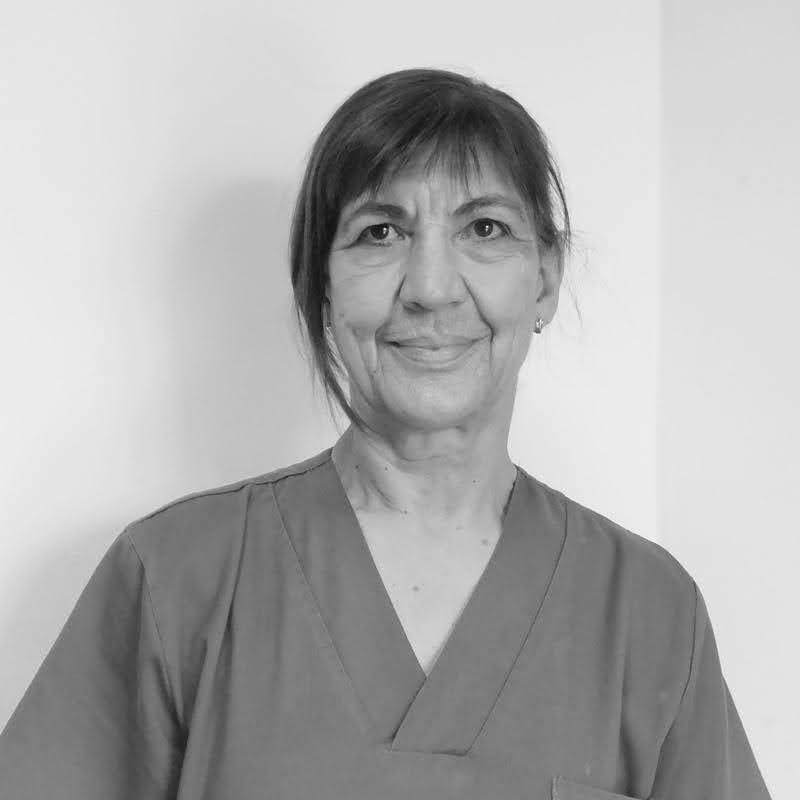 Amelia Arto